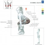 dumbbell-swuats