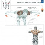 low-pulley-bent-over-lateral-raises