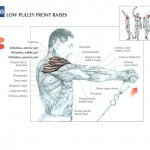 low-pulley-front-raises